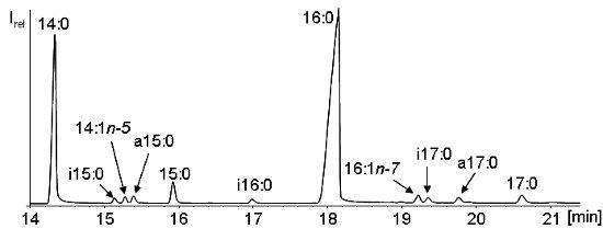 chirales c atom bestimmen